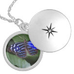 butterfly-272.jpg silver plated necklace