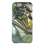 Butterfly Beauty Barely There iPhone 6 Case