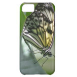Butterfly Beauty Cover For iPhone 5C