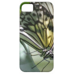 Butterfly Beauty iPhone SE/5/5s Case