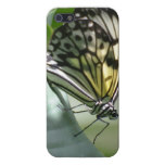 Butterfly Beauty iPhone SE/5/5s Cover