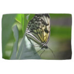 Butterfly Beauty Towel