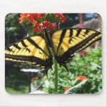 Eastern Tiger Swallowtail Butterfly Mouse Pad