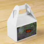 Natural Butterfly Favor Box