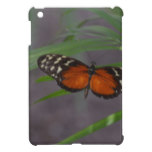 Natural Butterfly iPad Mini Cases