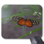 Natural Butterfly Mouse Pad