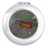 Natural Butterfly Vanity Mirror