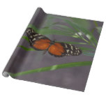 Natural Butterfly Wrapping Paper