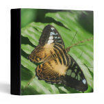 Winged Butterfly 3 Ring Binder