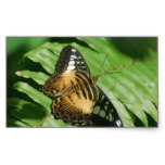 Winged Butterfly Rectangular Sticker