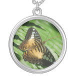 Winged Butterfly Silver Plated Necklace