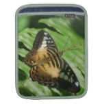 Winged Butterfly Sleeve For iPads