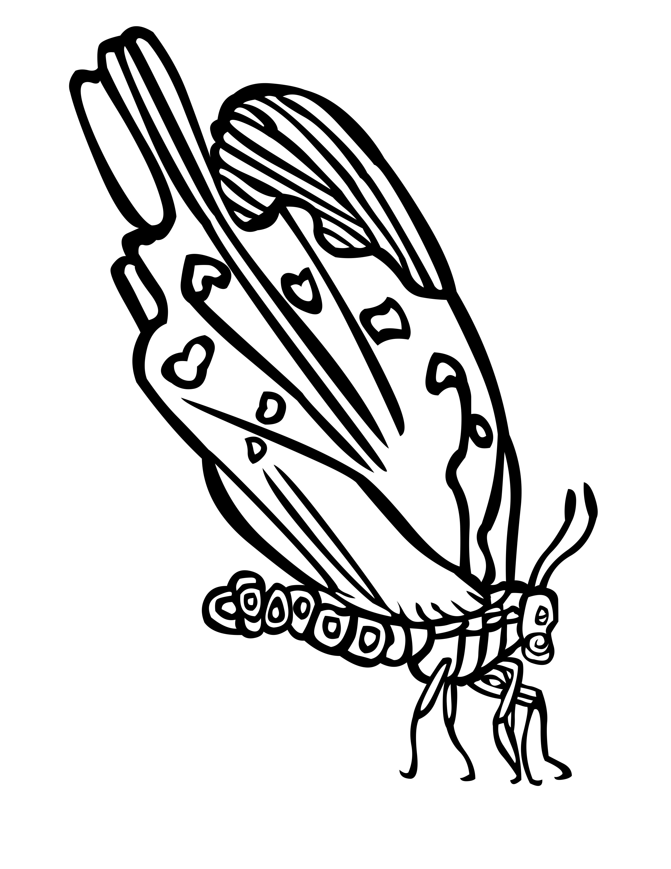 Butterfly wings coloring pages - Butterfly Wings Coloring Pages 58